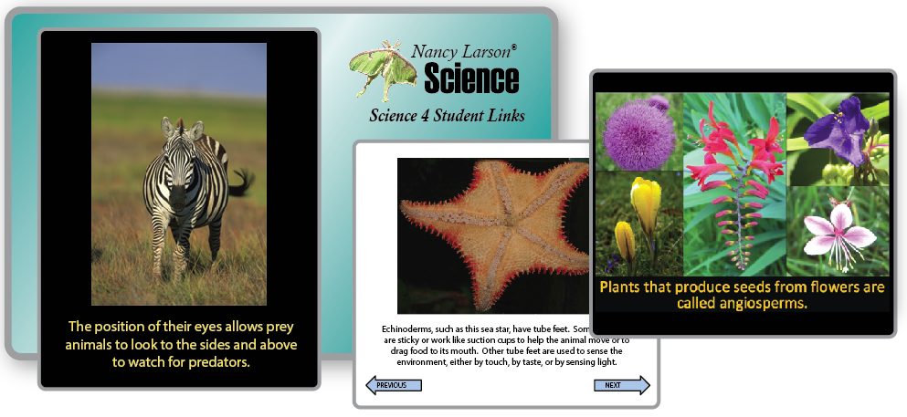 Science 4 Student Links
