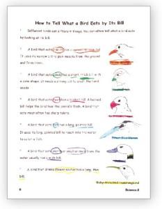 Science 2 Booklet Sample